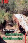 Amintirea Babilonului - Malouf David