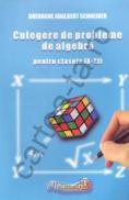 Culegere de probleme de aritmetica si algebra pentru clasele IX - XII - Gheorghe Adalbert Schneider