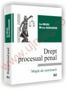 Drept procesual penal - Mapa de seminarii - Ion Neagu, Mircea Damaschin