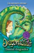 Dragonsdale - Salamanda Drake