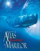 Marele atlas ilustrat al marilor - ***