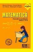 Matematica. Exercitii si probleme. Clasa a VI-a, semestrul II 2010-2011 - Cornel Moroti, Marius Giurgiu, Gheorghe Drugan, Ion Ghica