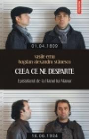 Ceea ce ne desparte. Epistolarul de la Hanul lui Manuc - Vasile Ernu, Bogdan-Alexandru Stanescu