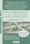 Ghid de pregatire pentru Bacalaureat 2011 Matematica M1 filiera teoretica - Carmen Angelescu , Nicolae Baciu , Ovidiu Badescu , Daniela Balanescu