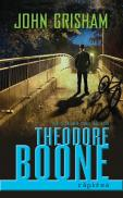 Theodore Boone: Rapirea - John Grisham