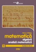Algebra si analiza matematica. Clasa a XI-a. Anexa la manual - Marin Chirciu