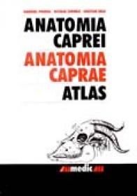 Anatomia Caprei - Atlas - PREDOI Gabriel, CORNILA Nicolae. BELU Cristian