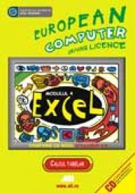 Ecdl- Modulul 4. Excel - Bernhard Eder, Willibald Kodym, Franz Lechner