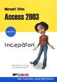 Microsoft Office Access 2003 Pentru Incepatori - GUNDERLOY Mike, Trad.RAICA Razvan