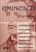 Eminescu erou literar - Maria Toma-Damsa