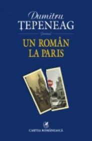 Un roman la Paris - Dumitru Tepeneag