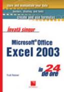 Invata singur Microsoft Office Excel in 24 de ore - Trudi Reisner