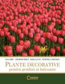 Plante decorative pentru gradini si balcoane  - A. Sarbu, G. Mohan, M. Catana, P. Comanescu