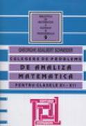 Culegere de probleme de analiza matematica pentru clasele XI-XII - Gheorghe Adalbert Schneider
