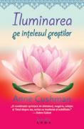 Iluminarea pe intelesul prostilor  - Anne Cushman