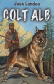 Colt Alb - Jack Jondon