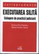 Executarea Silita - Simona Gina Pietreanu, Marcel Dumitru Gavris