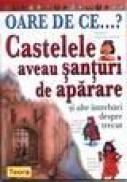 Oare de ce castelele aveau santuri de aparare - Philip Steele