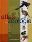 Atlas de zoologie - Jose Tola, Eva Infiesta