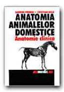 Anatomia Animalelor Domestice (anatomie Clinica) - PREDOI Gabriel, BELU Cristian