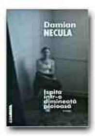 Ispita Intr-o Dimineata Ploioasa - NECULA Damian