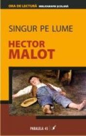 Singur Pe Lume - Malot Hector