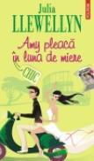 Amy pleaca in luna de miere - Julia Llewellyn