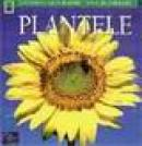 Plantele - Catherine H. Howell