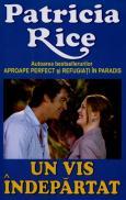 Un vis indepartat - Patricia Rice