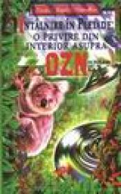 Intalnire in pleiade-o privire prin interior asupra OZN-urilor - Preston M. Nichols, Peter Moon