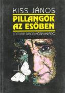Pilangok Az Esoben - Kiss Janos