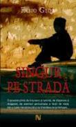 Singur Pe Strada - Fabio Geda