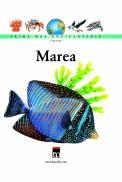 Marea - Larousse