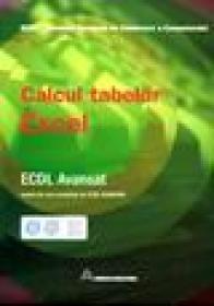 ECDL avansat - calcul tabelar Excel -