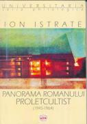 Panorama Romanului Proletcultist - Istrate Ion