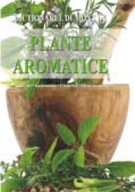 Plante aromatice - Andrea Rausch