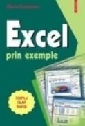Excel prin exemple - Silvia Curteanu